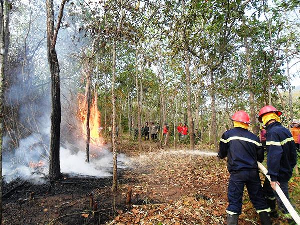 Nam Giang, Quảng Nam: Chủ động phòng chống cháy rừng